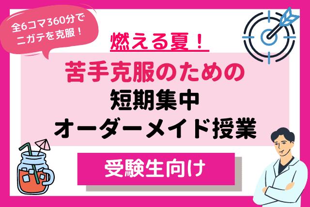 燃える夏~苦手分野克服のための短期集中オーダーメイド授業(全6コマ)~