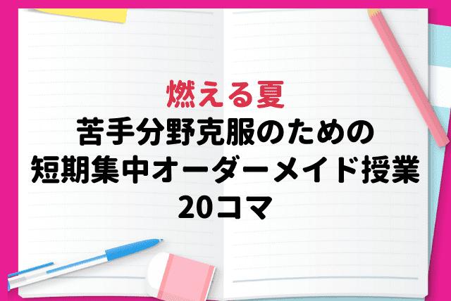 燃える夏~苦手分野克服のための短期集中オーダーメイド授業(全20コマ)~